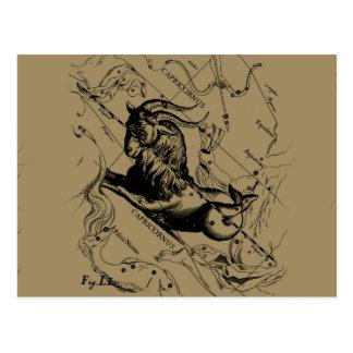 Carte Postale Constellation Hevelius de gravure vintage de
