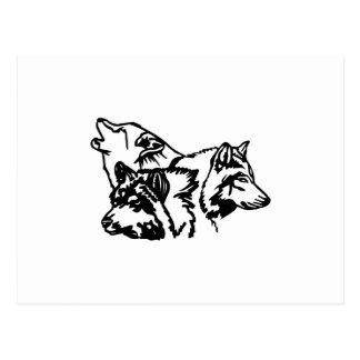Carte Postale Contour de meute de loups