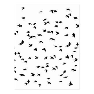 Carte Postale Copie d'oiseau d'hirondelles en vol