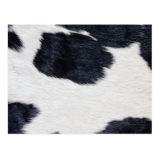 cartes postales peau de vache personnalis es. Black Bedroom Furniture Sets. Home Design Ideas