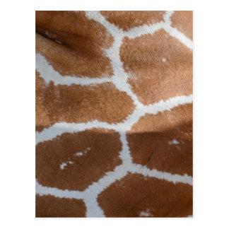 Carte Postale copie réticulée de peau de girafe