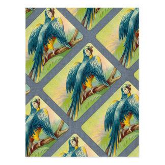 Carte Postale Copie vintage de perroquet