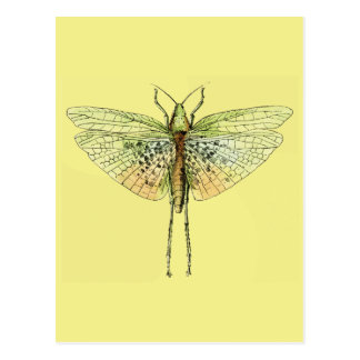 Carte Postale Copie vintage de sauterelle