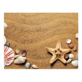 Carte Postale Coquilles de sable de plage