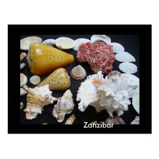 Carte Postale Coquilles de Zanzibar