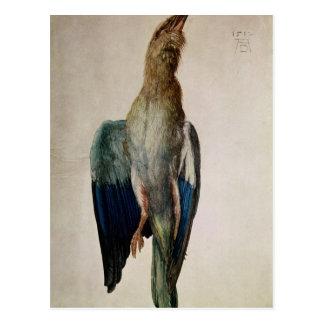Carte Postale Corneille bleue, 1512