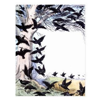 Carte Postale Corneilles
