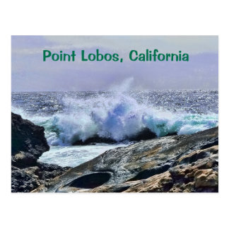 Carte Postale Côte centrale la Californie de Lobos de point