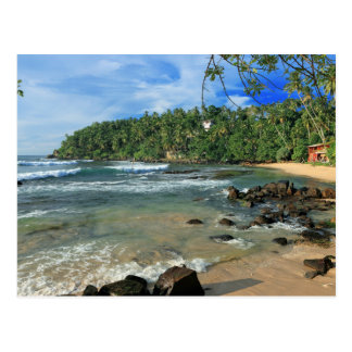 Carte Postale Côte sud blanche tropicale Sri Lanka de plage de