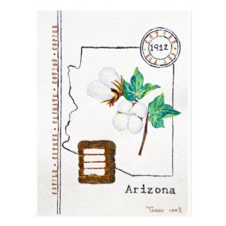 Carte Postale Coton de l'Arizona