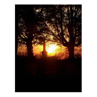 Carte Postale Coucher du soleil au cimetière
