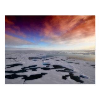 Carte Postale Coucher du soleil au-dessus de l'océan arctique
