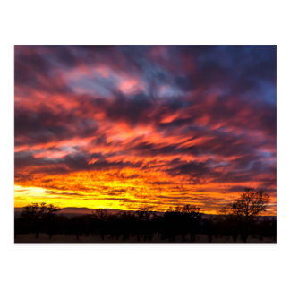 Carte Postale Coucher du soleil de novembre