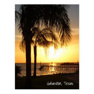 Carte Postale Coucher du soleil de palmier