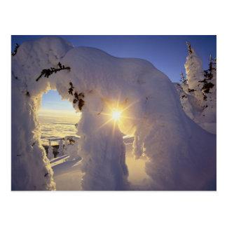 Carte Postale Coucher du soleil par le Snowghosts à la grande
