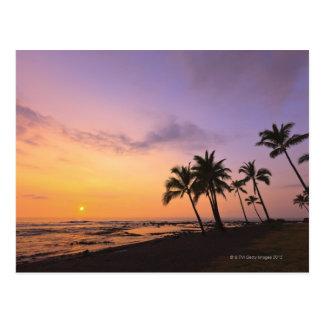 Carte Postale Coucher du soleil sur la baie de Kahaluu dans