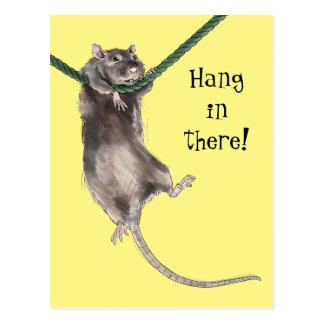 Carte Postale Coup chez là le rat