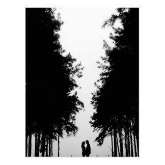 Carte Postale Couverture de forêt de nuit