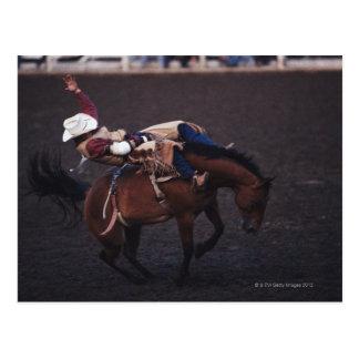 Carte Postale Cowboy dans un rodéo 2