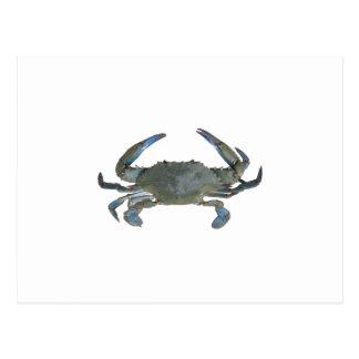 "Carte Postale Crabe bleu de ""Jimmy"""