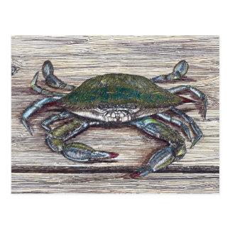 Carte Postale Crabe bleu sur le dock