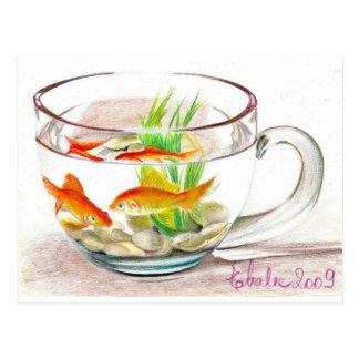Carte Postale cuvette de poissons