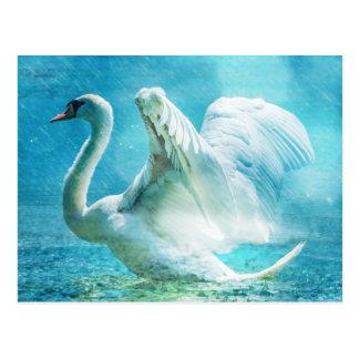 Carte Postale Cygne blanc sous la pluie