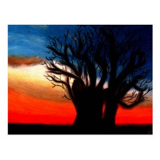 Carte postale d arbre de Pari Chumroo Baobob