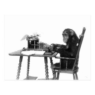 Carte Postale Dactylographie de chimpanzé
