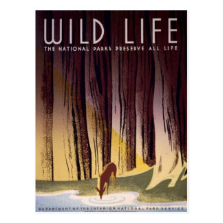 Carte postale d'affiche de parcs nationaux de WPA