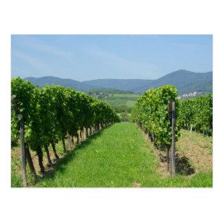 Carte Postale d'Alsace de Vins d'itinéraire