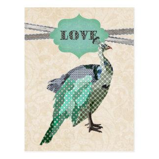 Carte postale d'amour de paon   de Celeste
