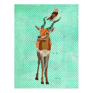 Carte postale d'ANTILOPE et de HIBOU