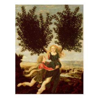 Carte Postale Daphne et Apollo, c.1470-80