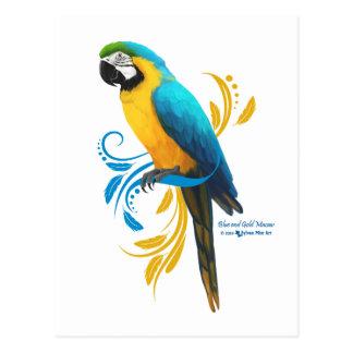 Carte postale d'ara de bleu et d'or