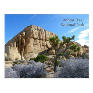 Carte postale d'arbre de Joshua !
