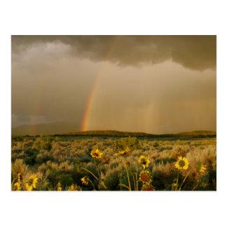 Carte postale d'arc-en-ciel de vallée de San Luis