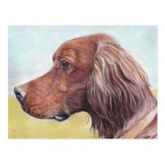 Carte postale d'art de chien de poseur irlandais
