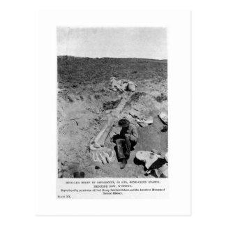 Carte postale d'art de fouille de dinosaure de