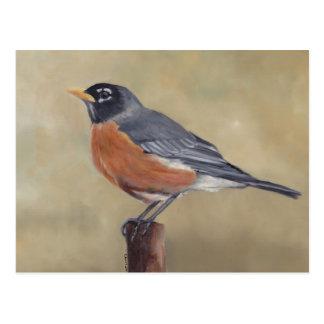 Carte postale d'art d'oiseau de Robin