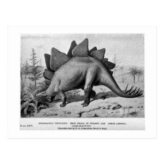 Carte postale d'art d'ungulatus de Stegosaurus