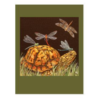 carte postale d'autobus scolaire de tortue