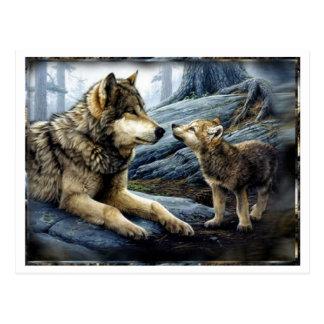 Carte postale de 2 loups