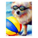 Carte postale de Beachin (Pomeranian)