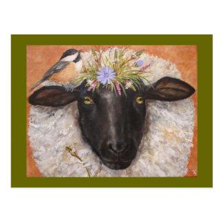 Carte postale de belle et de Chicky (moutons et