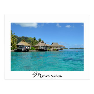Carte postale de blanc de pavillons de Moorea