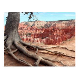 Carte postale de canyon de Bryce