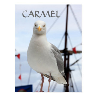 Carte postale de Carmel, de mouette et de bateau