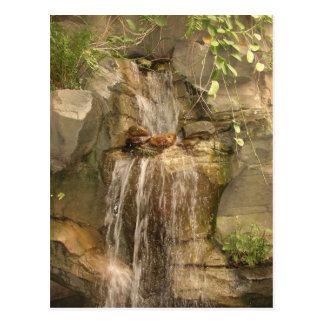 Carte postale de cascade !