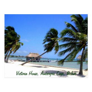 Carte postale de Caye Belize d'ambre gris de